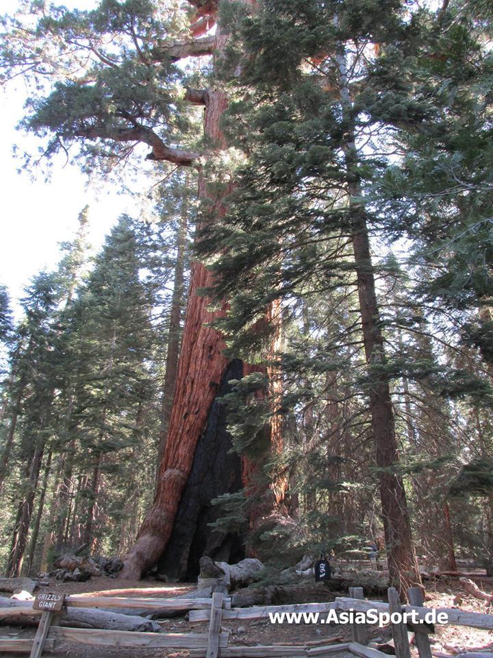 USA Kalifornien Suchbild