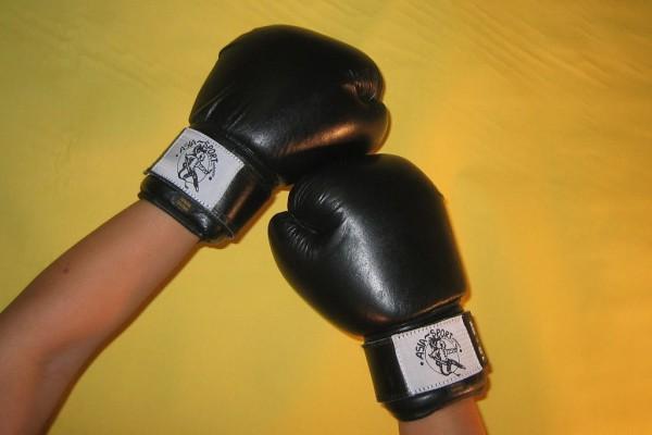 Boxhandschuh AsiaSport aus Leder