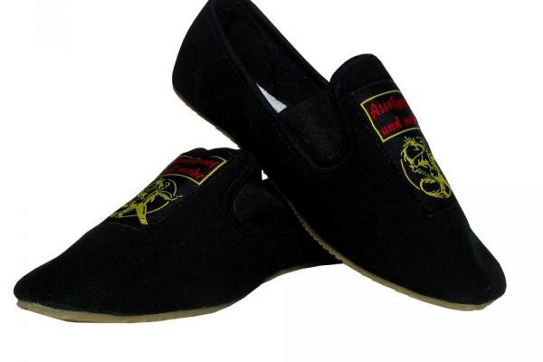 asiasport-kungfu-slipper