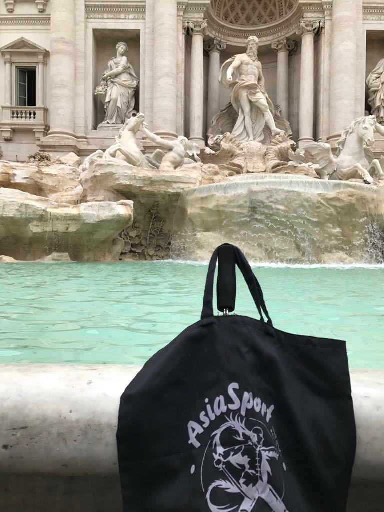 Rom. Trevibrunnen